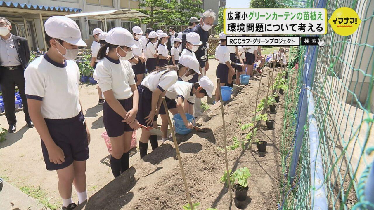 広瀬小グリーンカーテンの苗植え 環境問題について考える