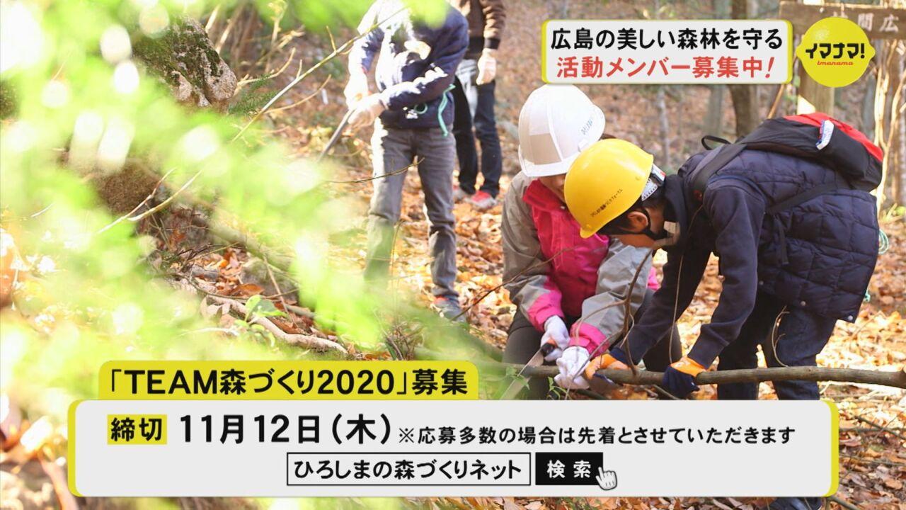 広島の美しい森林を守る 活動メンバー募集中!