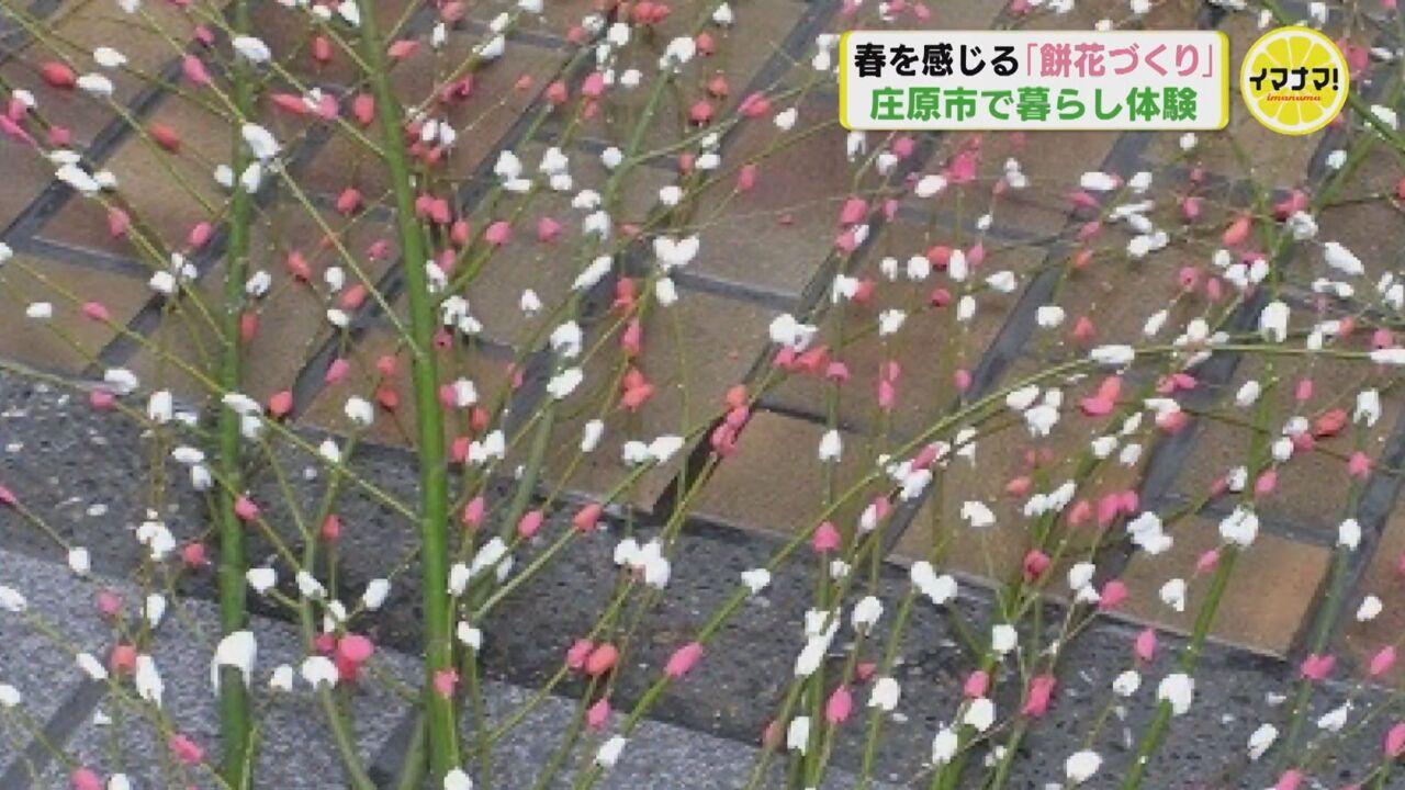 春を感じる「餅花づくり」 庄原市で暮らし体験