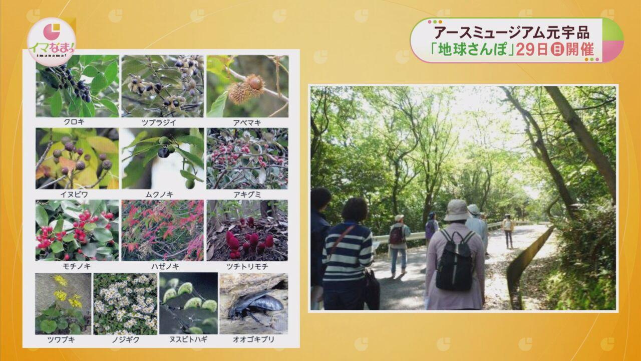 アースミュージアム元宇品「地球さんぽ」29日(日)開催