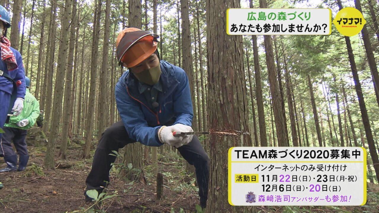 広島の森づくり あなたも参加してみませんか?